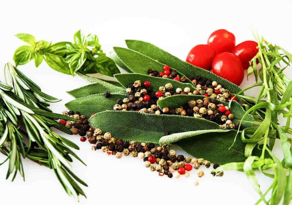 Herbs and Spices Health Benefits