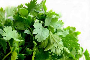 Drinking a cup of cilantro tea is a natural and healthy way to reduce anxiety.