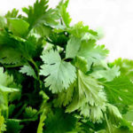Cilantro also known as Chinese parsley. It has a strong fragrance that is both sweet and pungent.