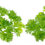 Parsley has a vibrant, aromatic flavour with a slightly lemony aroma