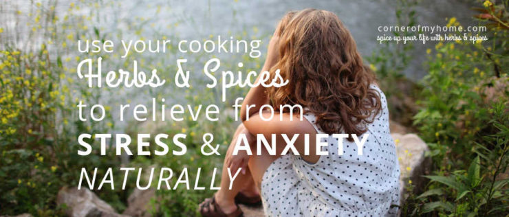 Use herbs and spices to relieve from stress and anxiety naturally