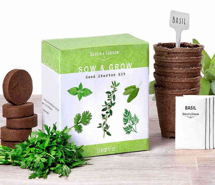 Indoor herb garden starter kit for beginners