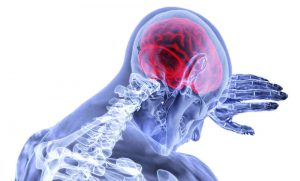 In your brain, there are natural cannabinoids and cannabinoids receptors