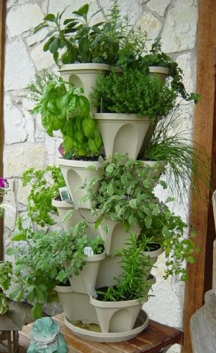 A good solution to growing herbs in small spaces