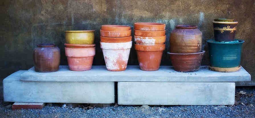 Terracotta and plastic pots are common for growing herbs
