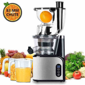 Aobosi Slow Masticating Juicer with Double Feeder Chute