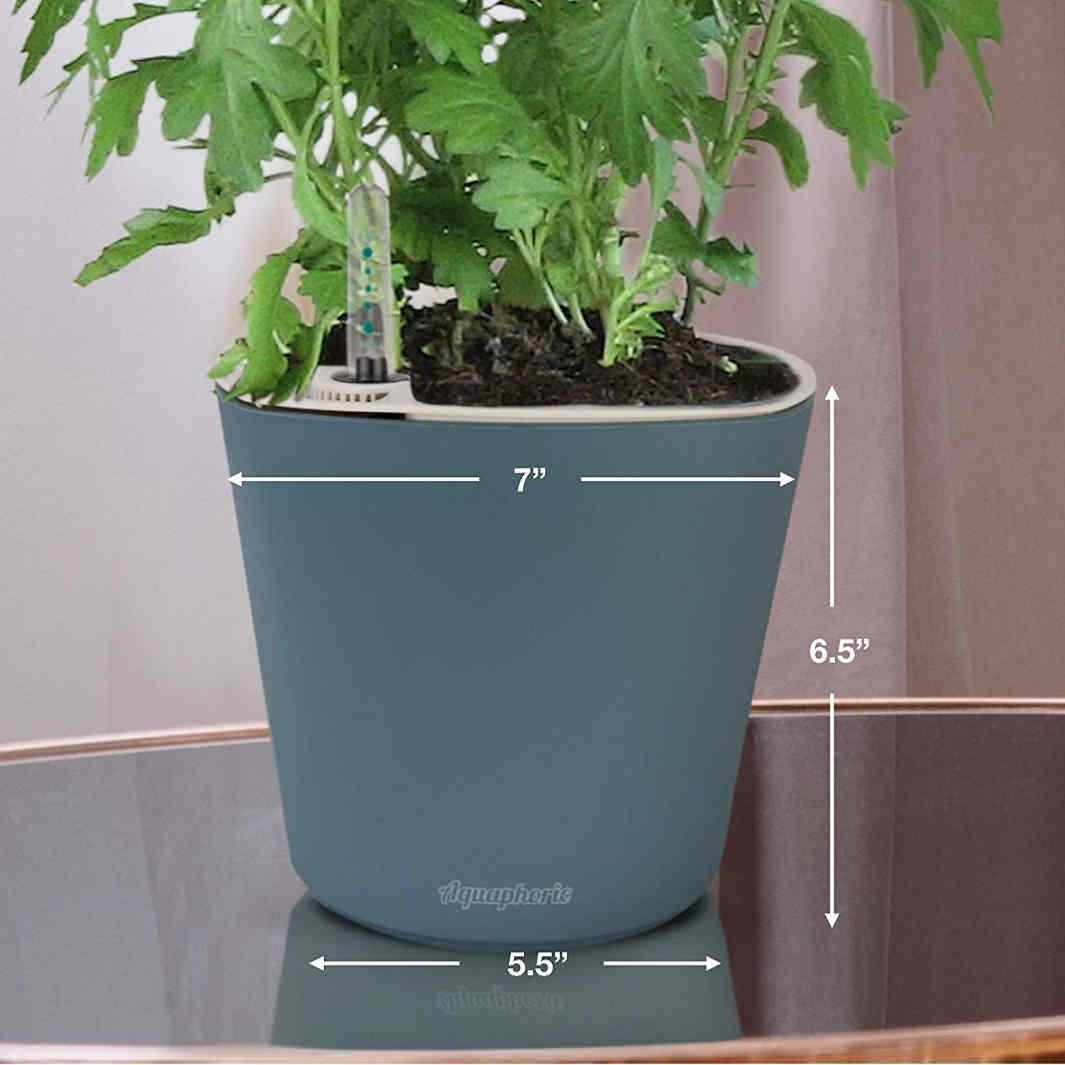Aquaphoric Self Watering Planter 7 inches