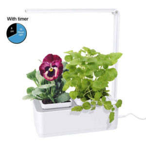 Uses hydroponic growing system