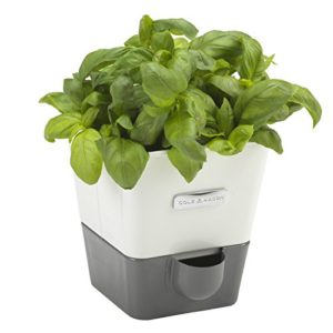 Simple yet attractive self-watering planter