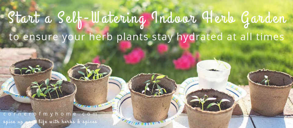 Ensures your herb plants stay hydrated all year round