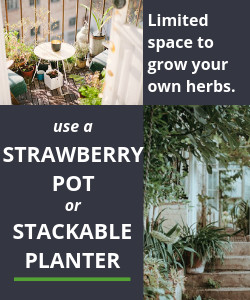 Grow your herbs using the Strawberry Pot or Stackable Planter if you have limited space