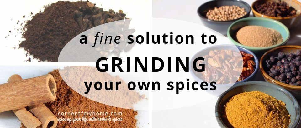 Best Electric Spice Grinder