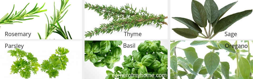 Herbs that pair well with beef are rosemary, thyme, sage, parsley, basil and oregano