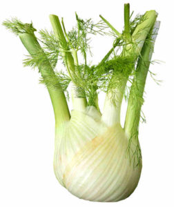 All parts of the fennel plant, including the bulb, stalks, leaves and seeds are used in cooking but the seeds are mainly used in herbal medicine