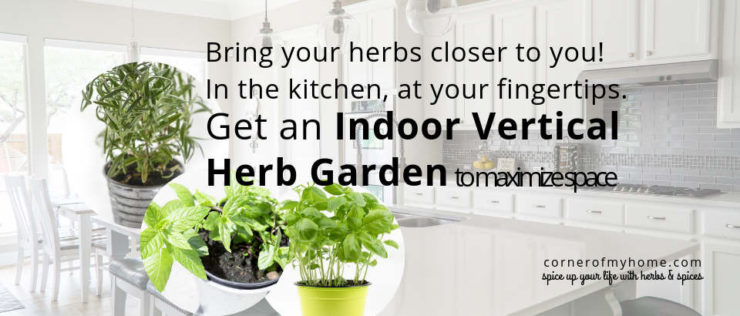 Bring your herbs close to you. Grow herbs indoor using vertical herb garden