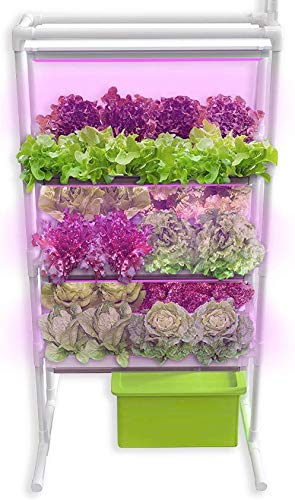 SavvyGrow Indoor Vertical Herb Garden Starter Kit