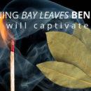 Burning Bay Leaves Benefits