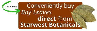 Buy Bay Leaves Direct from Starwest Botanicals