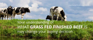 Your understanding of what grass fed finished beef is may change your buying decision