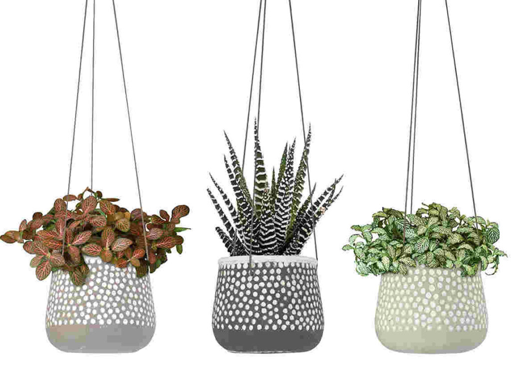 23 Bees Concrete Hanging Planter
