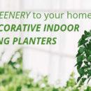 Decorative Indoor Hanging Planters
