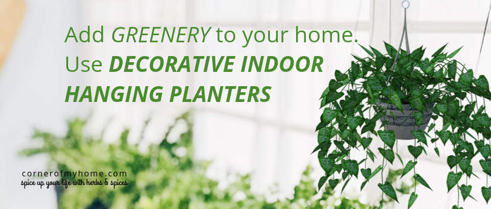 Add greenery to your home. Use decorative indoor hanging planters to save space.