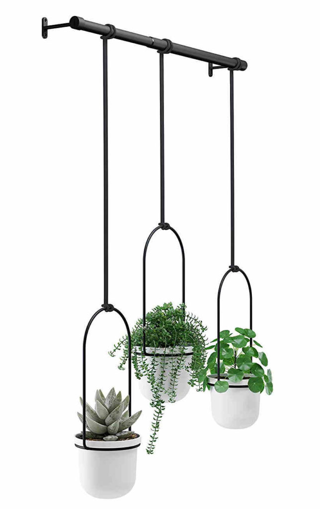 Umbra Triflora Hanging Planter