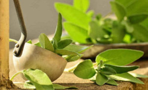 Sage is another herb that may help reduce inflammation besides rosemary