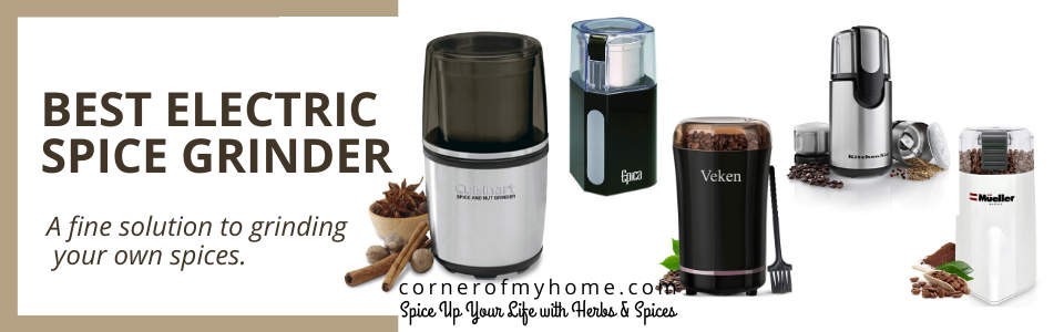 Best Electric Spice Grinder