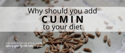 The amazing flavour and health benefits of cumin are the reasons why you should be adding cumin to spice up your dish.