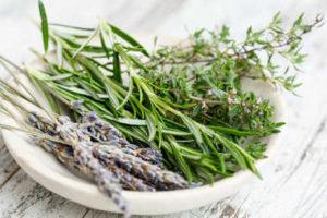 Fresh herbs on plate