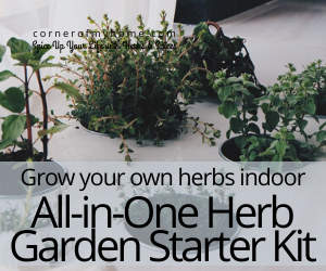 Grow your own herbs indoor. Get an all in one Herbs Garden Starter Kit.