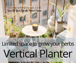 Limited space to grow your own herbs indoor? Use a vertical planter.