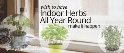 Grow indoor herbs year round