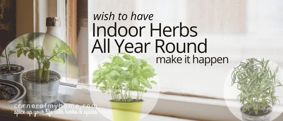 Grow indoor herbs year round