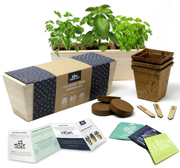 Urban Leaf Herb Garden Kit has everything you need to start growing your own herbs