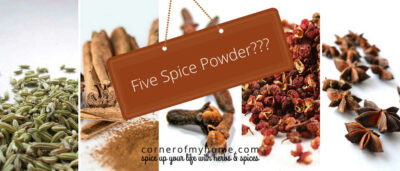 Find out exactly what is in five spice powder to make your own